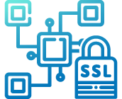 <p>SSL Encryption For Secure Data</p>